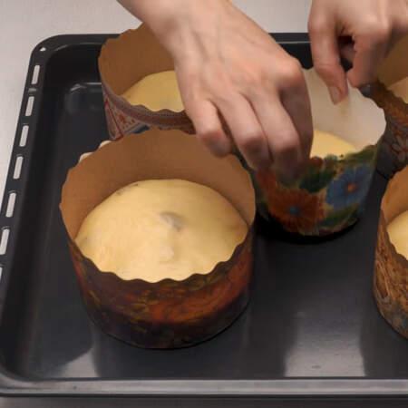 Все формы с тестом ставим на противень, на котором будем выпекать куличи.