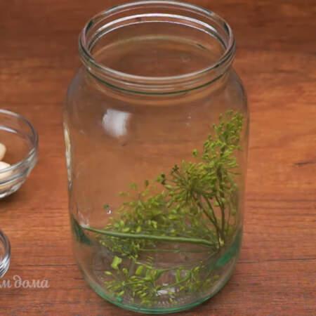 В чистую литровую банку кладем зонтик укропа, если нет зонтиков с укропом, то можно купить в аптеке или на рынке семена укропа.