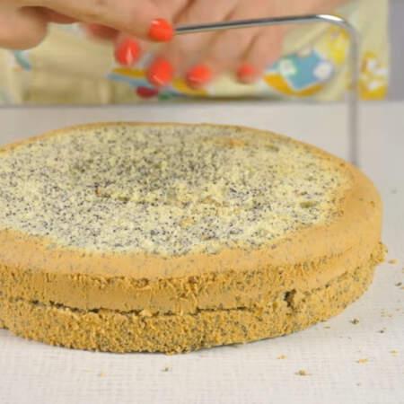 Маковый бисквит разрезаем струной на 2 коржа.