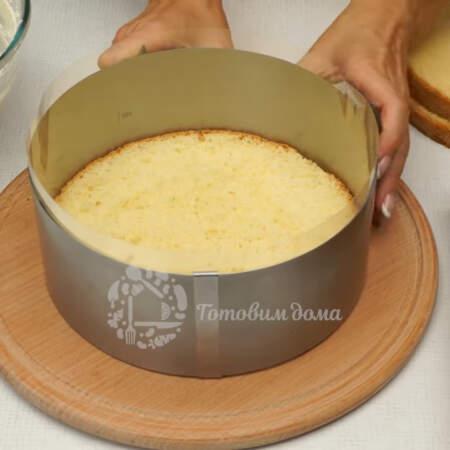 Собираем торт в кондитерском кольце. На дно кладем первый корж. Для удобства по бокам вставляем ацетатную пленку и сжимаем кольцо до размера коржа.